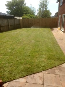 The completed turfed lawn