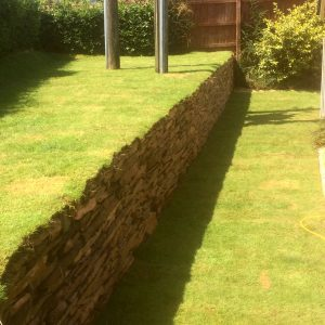 Turf in a garden with a retaining wall
